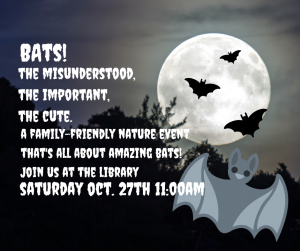 Bats: The Misunderstood, the Important, the Cute @ Town of Indian Lake Public Library | Indian Lake | New York | United States